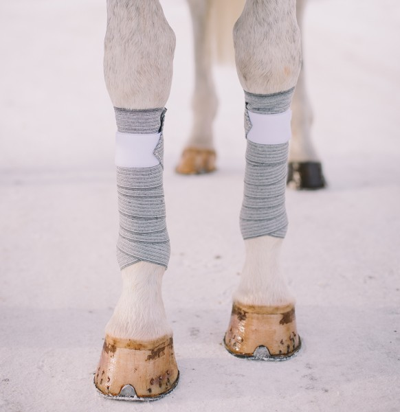 Incrediwear Equine Bandages