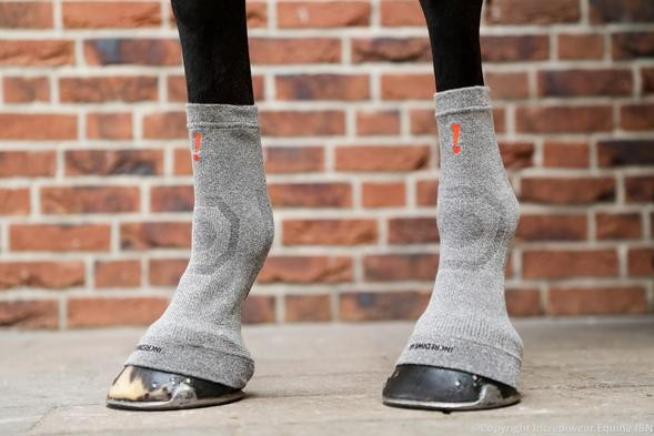 Incrediwear Equine Hoof Socks